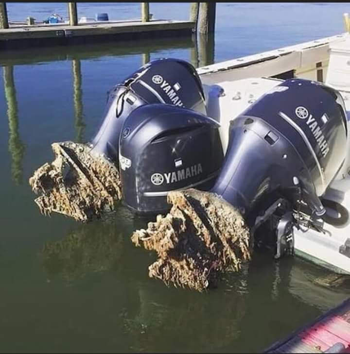 Corrosion on boat engine props from being left in the water.